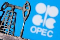 Reuters: OPEC+ đang xem xét gia hạn cắt giảm sản lượng