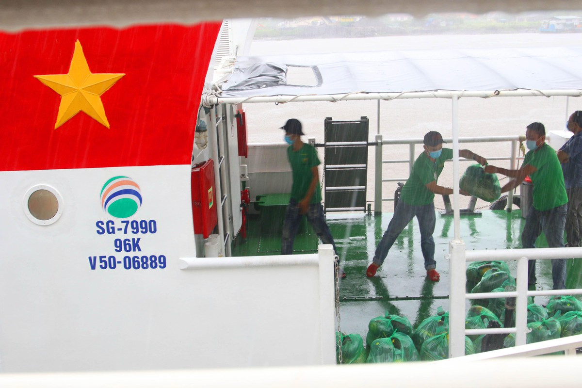 Chủ tịch Thế giới di động đi đón 20 tấn rau, quả vận chuyển bằng tuyến đường thuỷ ảnh 4