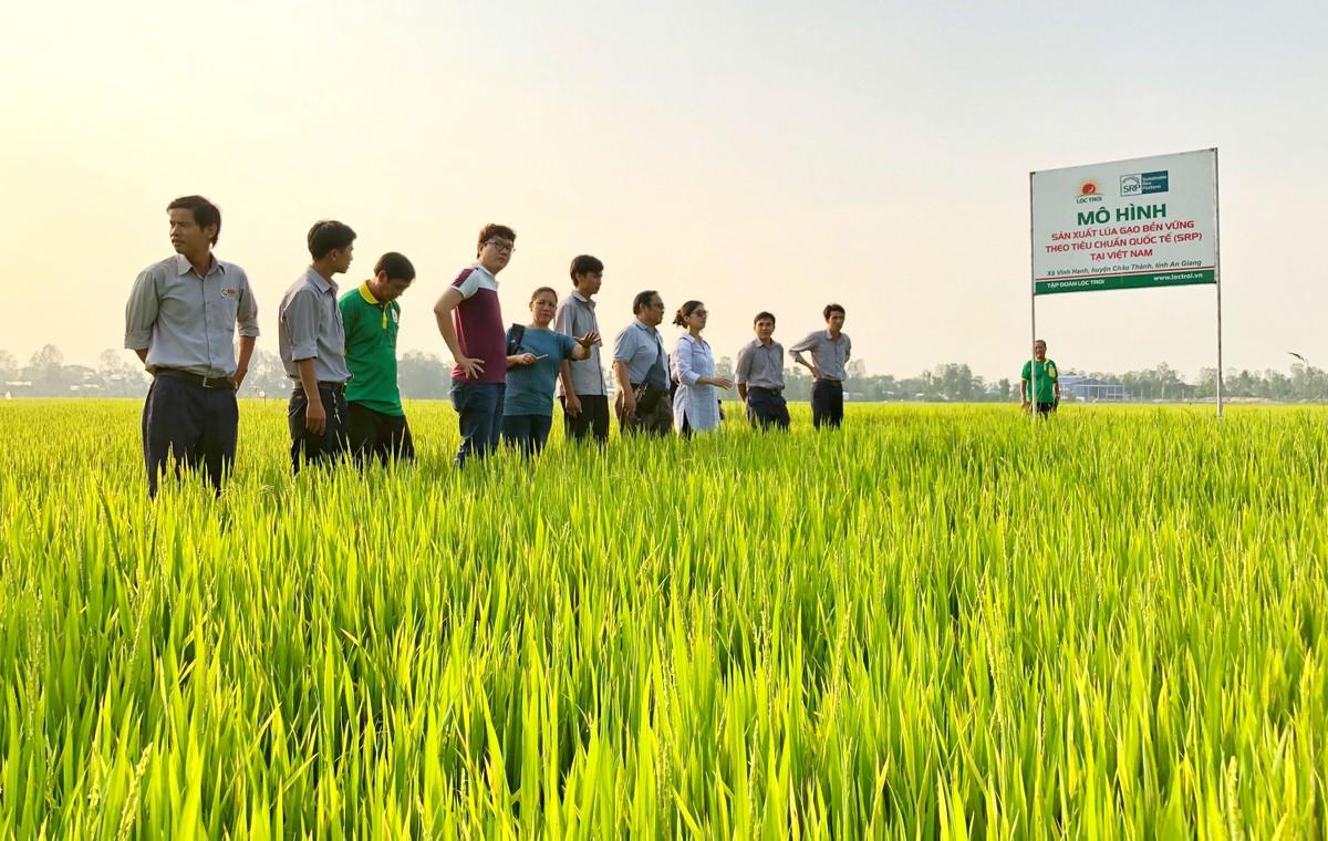 Lộc Trời số hoá nông nghiệp cho mục tiêu trở thành tập đoàn dịch vụ nông nghiệp hàng đầu khu vực ảnh 4