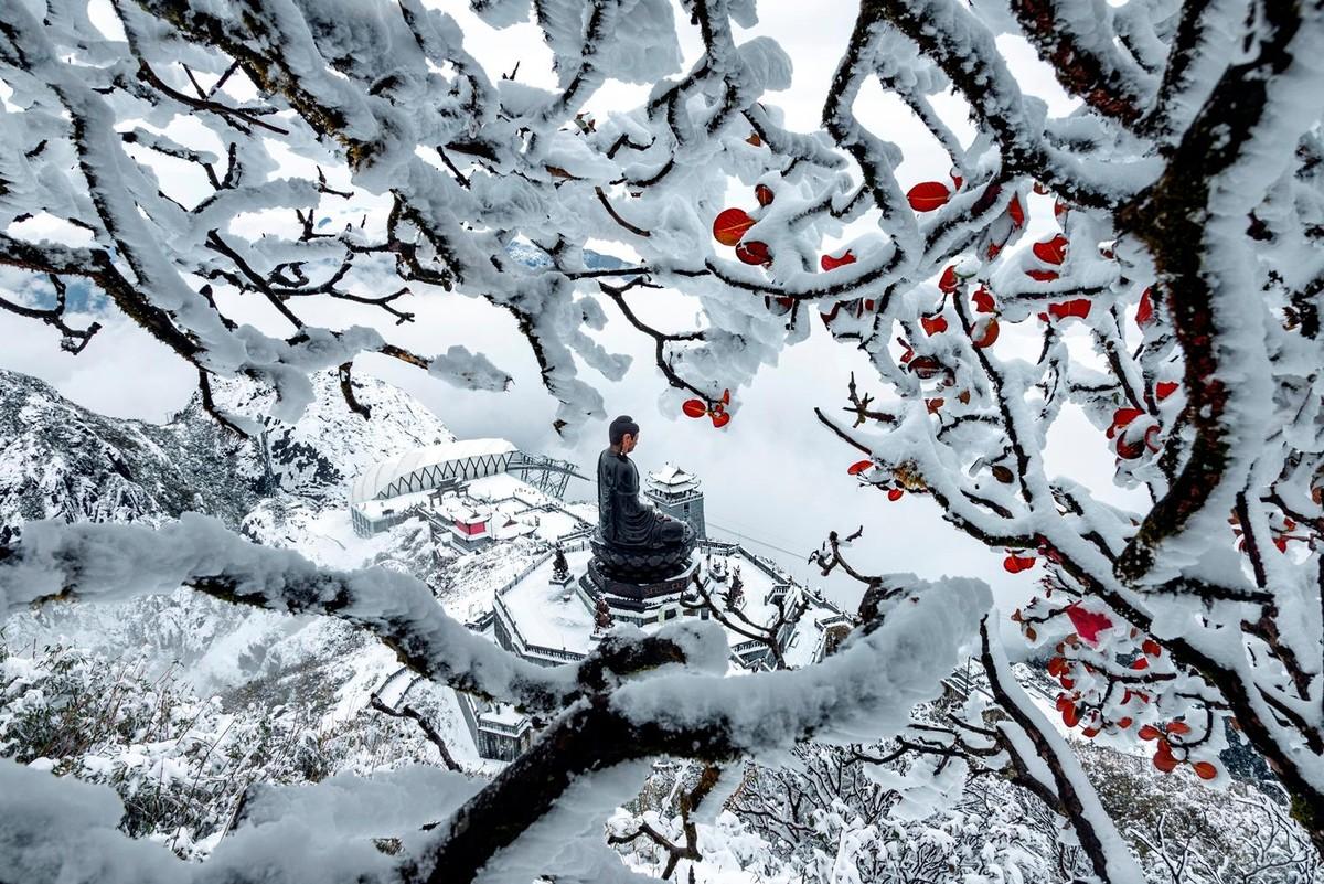 Nửa thập kỷ thắp sáng đỉnh Fansipan, gọi Sa Pa bốn mùa xuân về ảnh 22