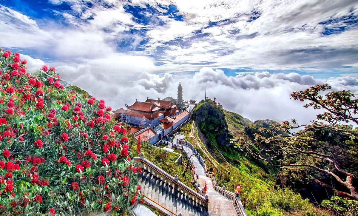 Nửa thập kỷ thắp sáng đỉnh Fansipan, gọi Sa Pa bốn mùa xuân về ảnh 24