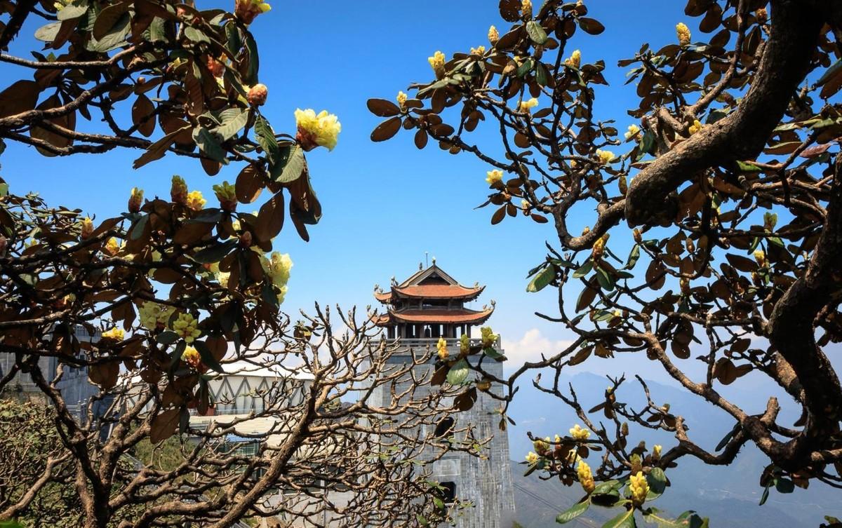 Nửa thập kỷ thắp sáng đỉnh Fansipan, gọi Sa Pa bốn mùa xuân về ảnh 27