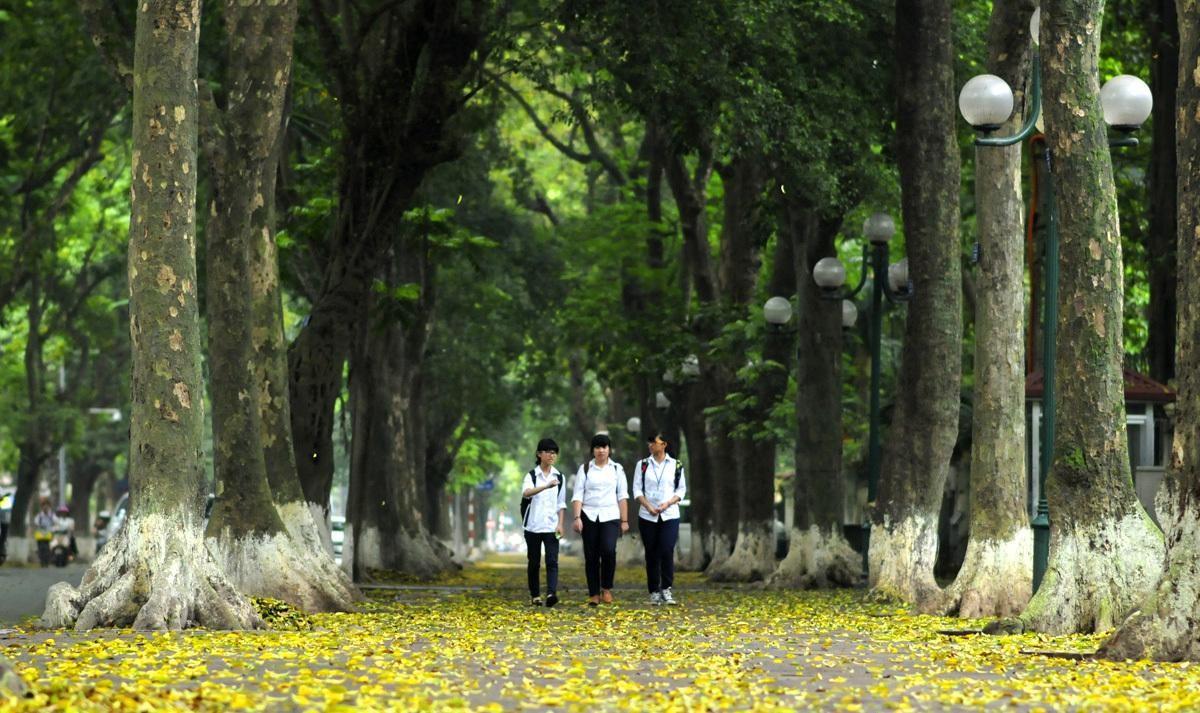 Hà Nội - Thành phố ngàn năm sáng tạo (Bài 1): Dòng chảy sáng tạo vô tận ảnh 8