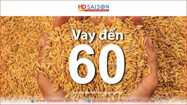 HD SAISON hiện thực hóa giấc mơ người Việt ảnh 1