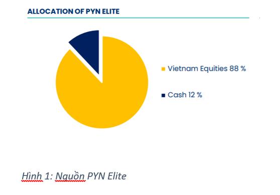 Tháng 10, lượng tiền mặt của PYN Elite bất ngờ tăng mạnh lên 12%, cao nhất trong năm 2020 ảnh 1