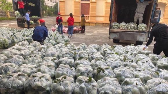 Giải cứu nông sản vẫn gặp khó, 90.000 tấn nông sản tại Hải Dương chưa tiêu thụ được ảnh 2