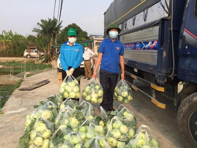 Giải cứu nông sản vẫn gặp khó, 90.000 tấn nông sản tại Hải Dương chưa tiêu thụ được ảnh 1