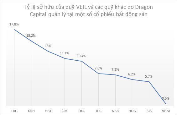 Khẩu vị mới của Dragon Capital với cổ phiếu bất động sản ảnh 3