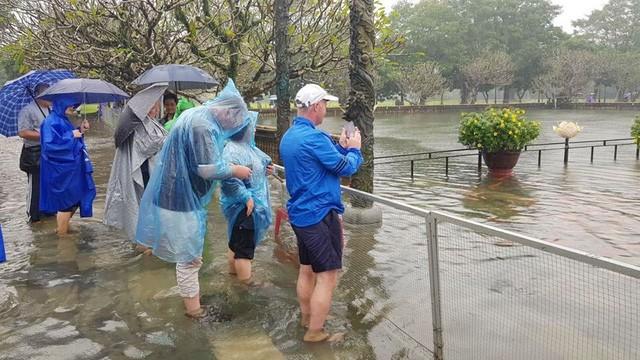 Hàng trăm con cá cảnh ở Hoàng Cung Huế... lên cầu bơi lội! ảnh 6