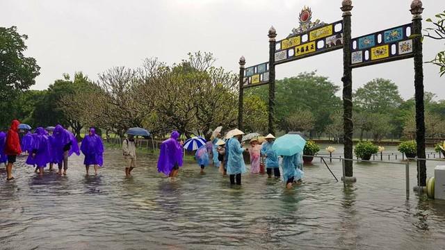 Hàng trăm con cá cảnh ở Hoàng Cung Huế... lên cầu bơi lội! ảnh 7