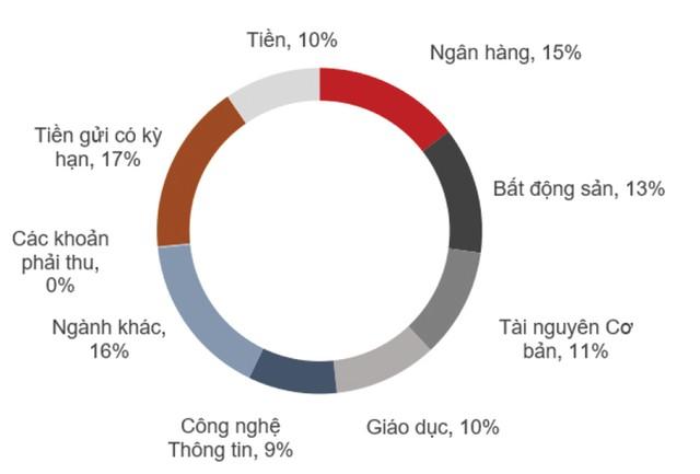 NAV của Quỹ đầu tư cổ phiếu Techcom giảm gần 13% ảnh 1