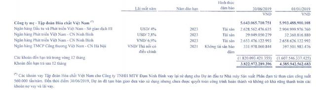 """Phong tỏa thêm nghìn tỷ đồng cổ phiếu của Vinachem, """"quả bom nợ"""" Đạm Ninh Bình vẫn treo lơ lửng ảnh 1"""