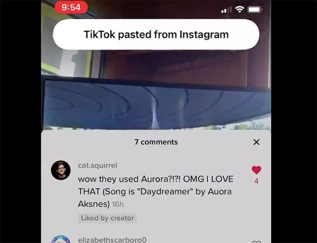 TikTok và hàng loạt ứng dụng lộ hành vi đọc dữ liệu người dùng ảnh 1