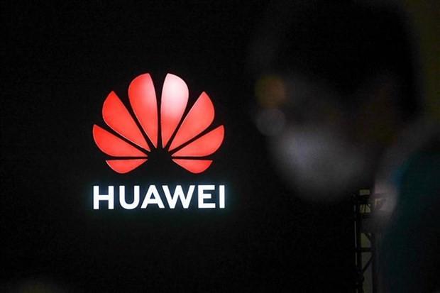 Mảng điện thoại thông minh của Huawei rơi vào thế khó? ảnh 1