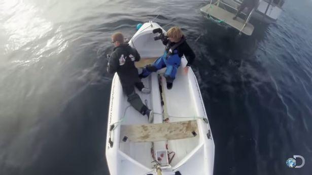 Đoàn làm phim số đen liên tục bị cá mập trắng khổng lồ tấn công ảnh 2
