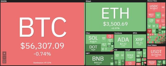 Giá Bitcoin hôm nay ngày 13/10: Tỷ lệ Bitcoin có lời trên thị trường đạt gần 96%, giới đầu tư bắt đầu chốt lãi ảnh 1