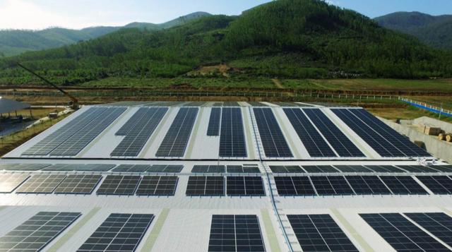 SP Group liên doanh với BCG Energy đầu tư điện mặt trời tại Việt Nam ảnh 2