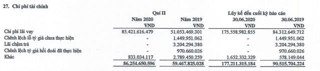Điện Gia Lai (GEG), quý II/2020 hoàn thành được 44,6% kế hoạch lợi nhuận trước thuế năm 2020 ảnh 1