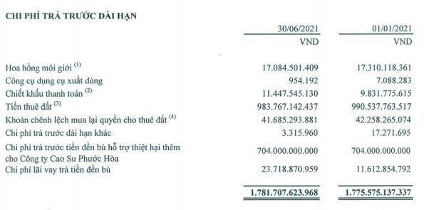 Khu công nghiệp Nam Tân Uyên (NTC): 6 tháng đầu năm, lợi nhuận tăng 15,7% lên 163,5 tỷ đồng ảnh 1