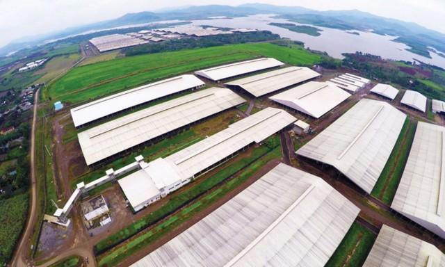 """BAC A BANK """"nâng bước"""" các dự án nông nghiệp công nghệ cao"""