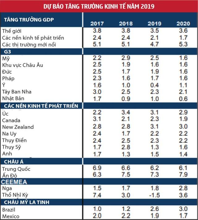 2019 thách thức kinh tế đến sớm ảnh 1