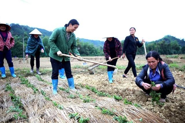 Thạch đen Lạng Sơn xuất khẩu chính ngạch sang Trung Quốc ảnh 2