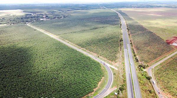 Đầu tư tuần qua: Quảng Ninh sắp hoàn thành cây cầu 2.100 tỷ đồng, Nghệ An hút đầu tư 6.000 tỷ đồng ảnh 15