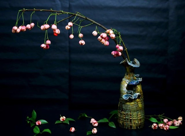 Cành quả lồng đèn yểu điệu, quyến rũ khiến người yêu hoa mê đắm ảnh 7