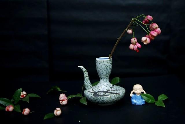 Cành quả lồng đèn yểu điệu, quyến rũ khiến người yêu hoa mê đắm ảnh 8