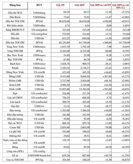 Thị trường hàng hóa tuần từ 3-10/9: Khí LNG và nickel tăng kỷ lục, vàng và nông sản đi xuống ảnh 1