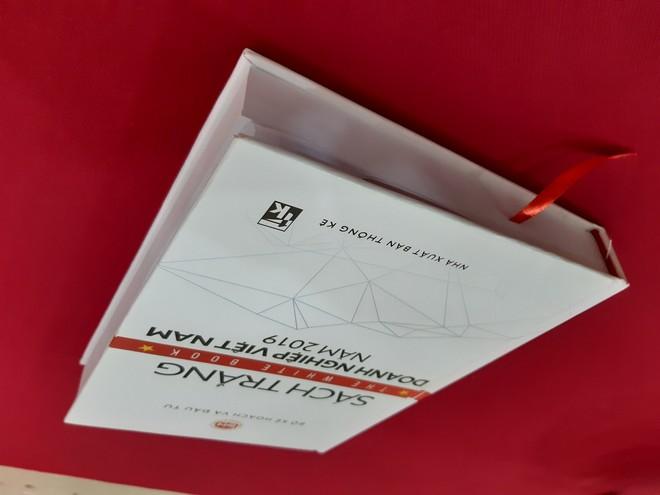 Lần đầu công bố Sách trắng Doanh nghiệp Việt Nam ảnh 1