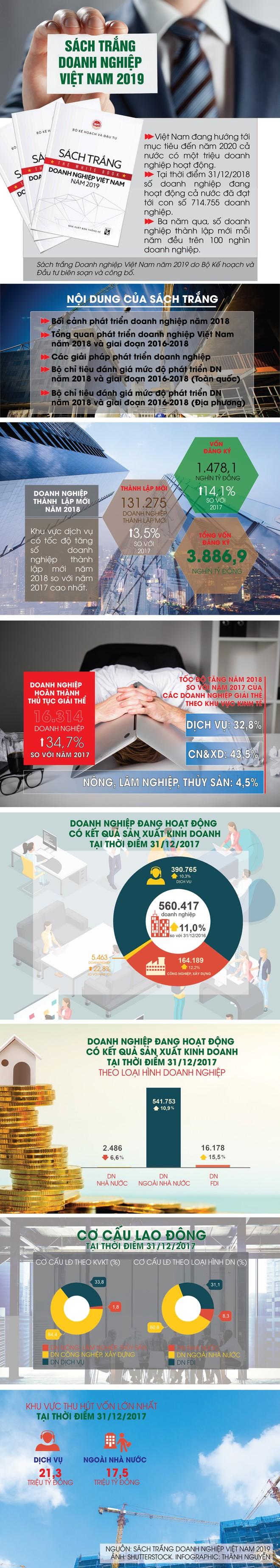 [InfoGraphic] Những nội dung quan trọng của Sách trắng Doanh nghiệp Việt Nam 2019 ảnh 1