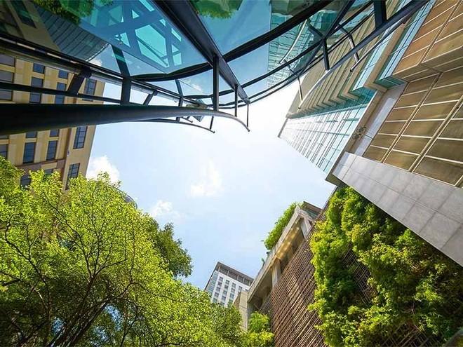 70% khách thuê chọn tòa nhà xanh dù giá thuê cao hơn