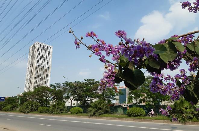 Quý III/2021, nguồn cung sơ cấp căn hộ Hà Nội đạt 19.600 căn, giảm 8% theo quý