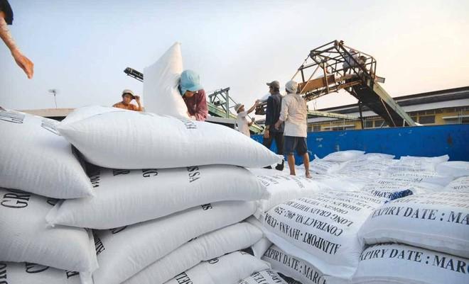 Đối với hoạt động mua lúa gạo tạm trữ, Vinafood2 cũng có sai phạm chưa mua trực tiếp của người nông dân, không tổ chức liên kết được thành hệ thống trong mua bán đảm bảo người nông dân có lãi tối thiểu 30% (ảnh minh họa)