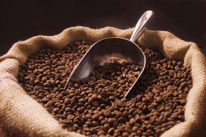 Đồng Nai: Cựu Giám đốc bán khống hàng nghìn tấn cà phê lĩnh án 12 năm tù và phải bồi thường 59 tỷ đồng