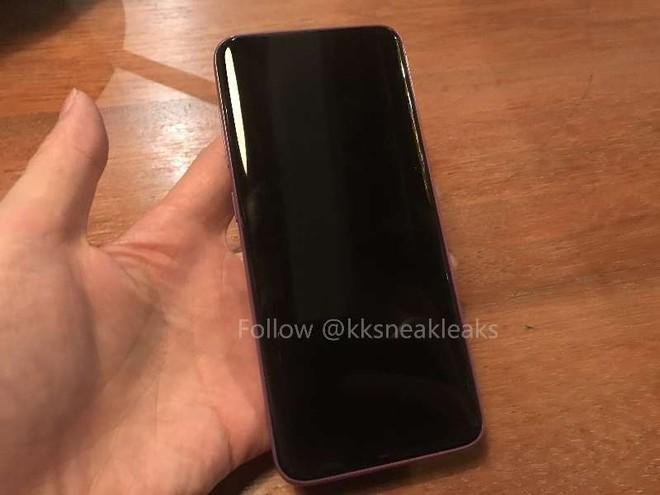 Galaxy S8 có thể thêm phiên bản màu tím ảnh 2