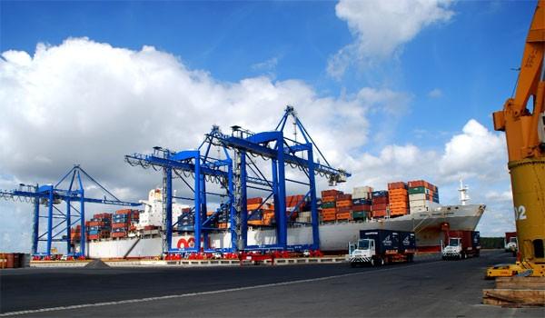 Cảng Cái Mép - Thị Vải dù đầu tư hàng tỷ USD nhưng công suất hoạt động chỉ 15-20%.
