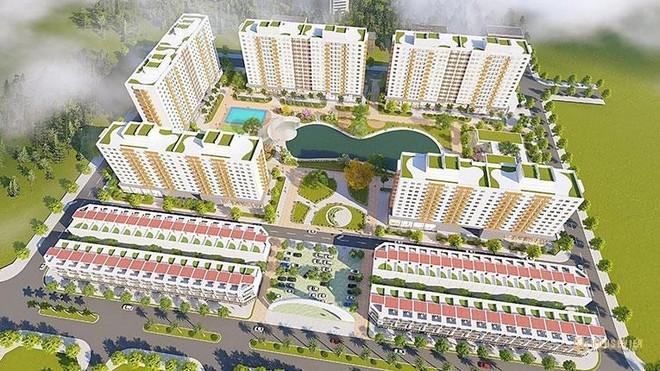 Bình Định thúc đẩy nhanh công tác giải phóng mặt bằng dự án Nhà ở xã hội EcoHome Nhơn Bình