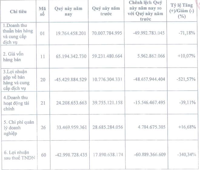 TASCO (HUT): Quý IV/2020, lợi nhuận giảm 340,34% ảnh 1