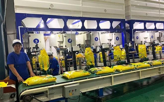 Nông nghiệp Công nghệ cao Trung An (TAR): Tổng giám đốc muốn bán hết 9,48 triệu cổ phiếu