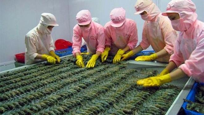 Theo Thương vụ Việt Nam tại Úc, hàng thủy sản, trong đó có con tôm đang rất có tiềm năng xuất sang thị trường Úc vì 70% nhu cầu tại thị trường này đang phụ thuộc vào nguồn nhập khẩu.