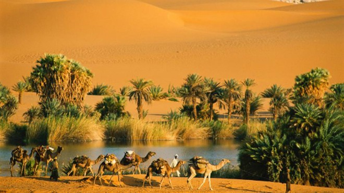 Những điều kỳ lạ từng xảy ra trên sa mạc Sahara ảnh 1