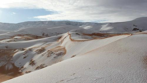 Những điều kỳ lạ từng xảy ra trên sa mạc Sahara ảnh 2