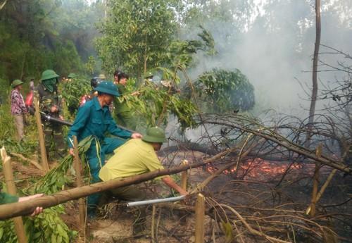 Nhà chức trách dập lửa tại đám cháy rừng ở huyện Lộc Hà. Ảnh: Đ.H.