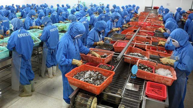 Mặt hàng tôm Việt được nhận định sẽ khó cạnh tranh với các đối thủ tại thị trường Trung Quốc khi nước này điều chỉnh tỷ giá đồng NDT.