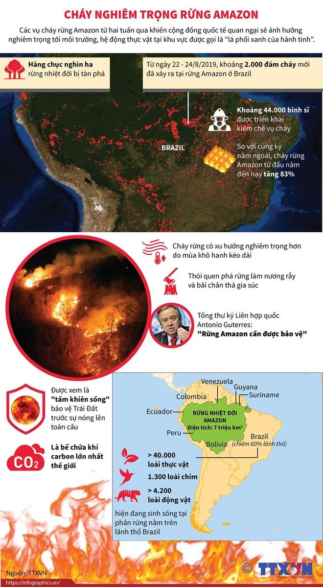 Cháy rừng Amazon ngày càng diễn ra nghiêm trọng và lan rộng hơn ảnh 1