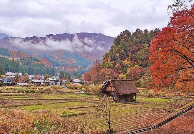 Làng Doraemon đẹp tựa cổ tích vào mùa thu Nhật Bản