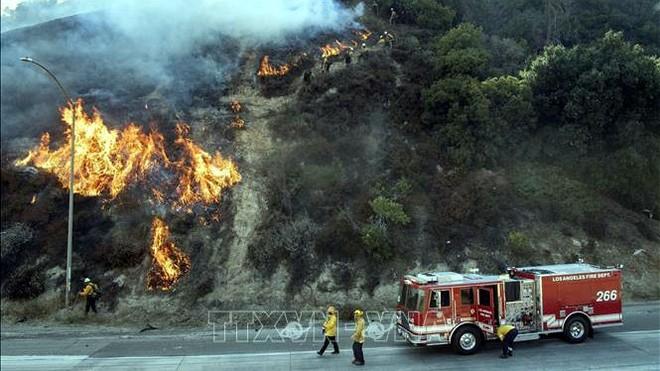 Nhân viên cứu hỏa nỗ lực khống chế các đám cháy rừng lan rộng tại Newhall, California, Mỹ, ngày 11/10. Ảnh: AFP/TTXVN.