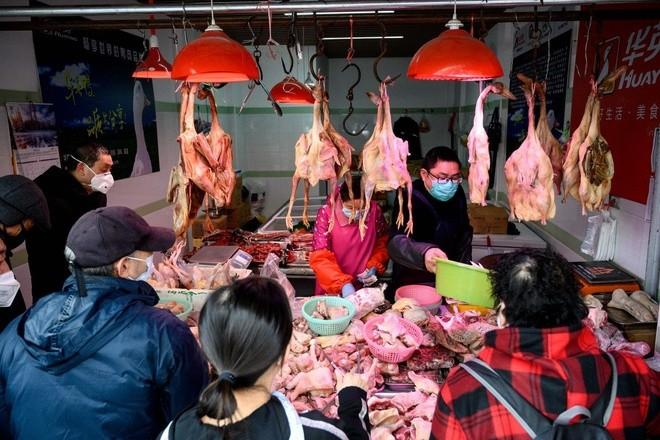 Trung Quốc là nhà sản xuất gia cầm lớn thứ hai thế giới và đã tăng cường nhập khẩu để bù đắp sự thiếu hụt thịt rất lớn sau khi dịch tả lợn châu Phi tàn phá đàn lợn nước này. Ảnh: AFP.